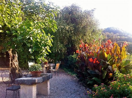 Vall de Pollensa: outdoor seating