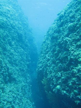 Diamond Diving: Beautiful topograhy