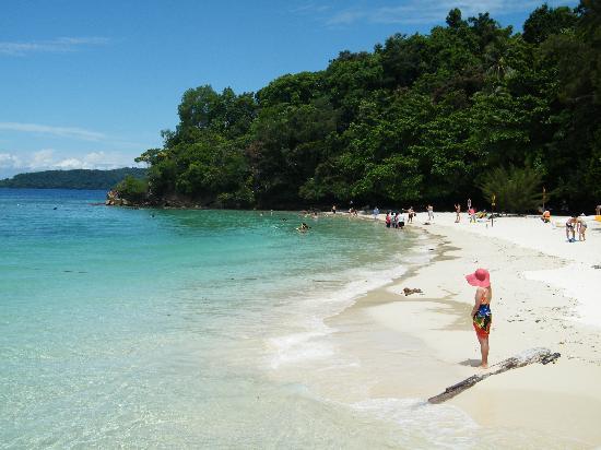 Hotel Eden54: sapi island borneo