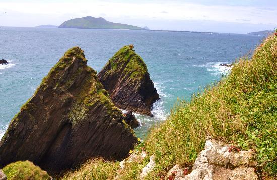 Dingle Tours: sheashead coast