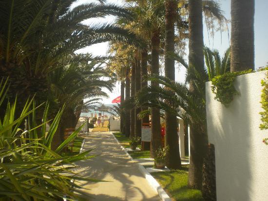 Club Marmara Hammamet Beach: allée donnant accès direct à la plage...