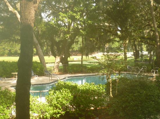 Villas of Amelia Island Plantation : View of pool from room