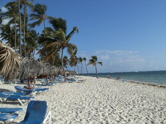 Natura Park Beach - EcoResort & Spa: plage du Natura