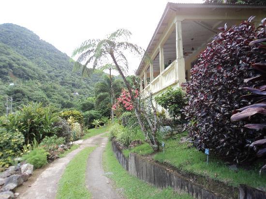 Casa Grande Mountain Retreat: Entrada, recepcion y restaurante.
