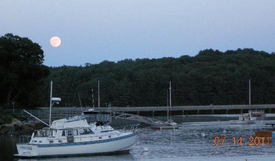 Market: Moon rise ~ Lobster Cove