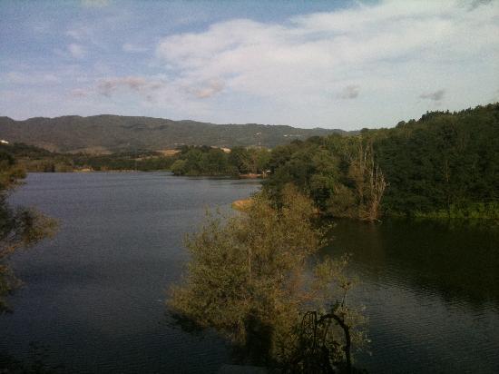 โรงแรมเดล ลาโก: Vista lago dalla camera