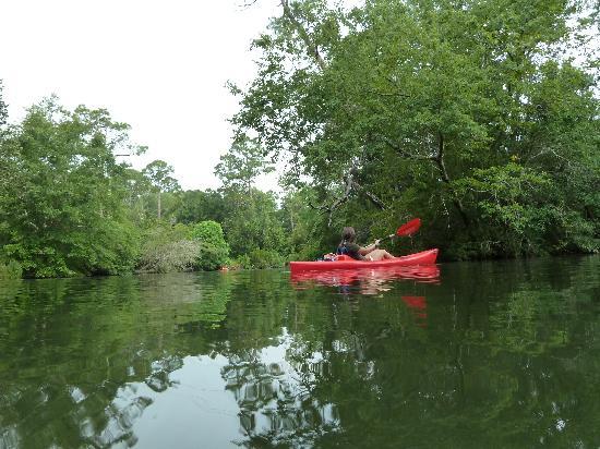 BeachnRiver Canoe and Kayak Rentals : The beautiful Bon Secour