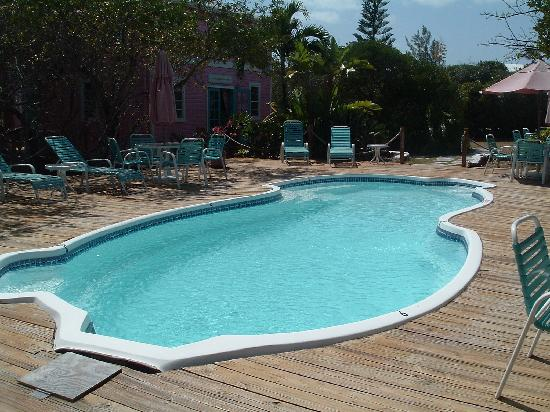 Dolphin Beach Resort: Resorts pool