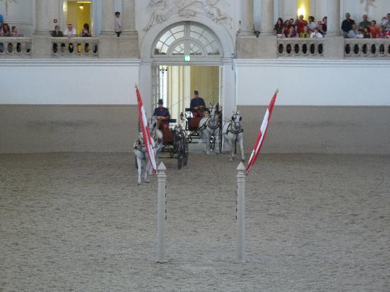 Spanish Riding School : deux calèches qui tournent, qui tournent