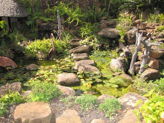 Amanzi Lodge: Lodge Gardens