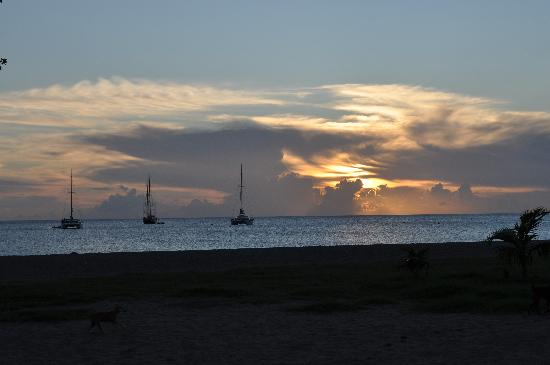 Sunshine's Beach Lounge: View from Sunshines