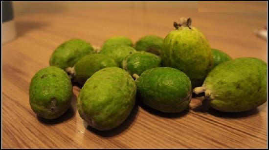 ‪أبي موتور لودج: Feijoa sent by Linda‬