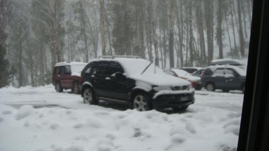 Great Sights: Snow-covered vehicles
