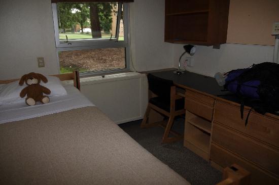Pacific Spirit Hostel at UBC : Dorm Room