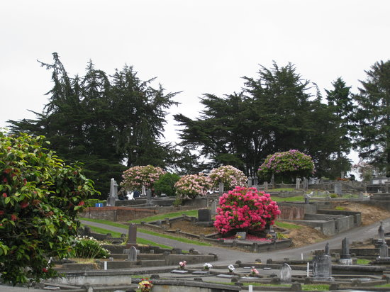 Ferndale Historic Cemetery