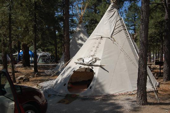Flagstaff Grand Canyon KOA: Teepee from outside