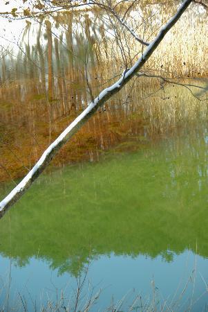 Kitashiobara-mura, Japon : 雪の「五色沼」
