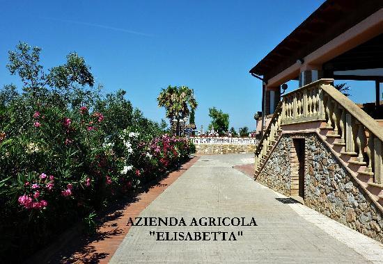 Agrihotel Elisabetta: Eingang