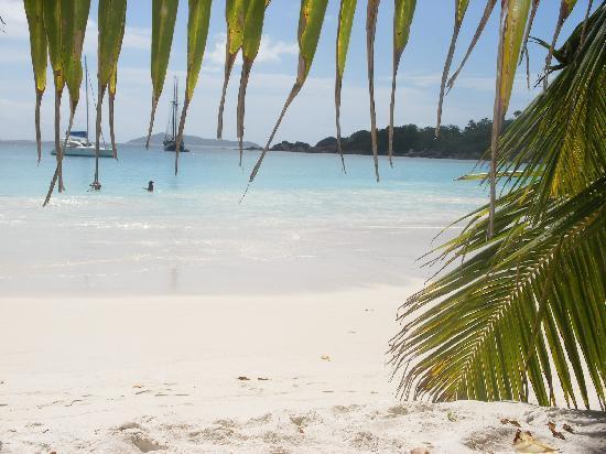 Coco de Mer - Black Parrot Suites: Anse Lazio beach