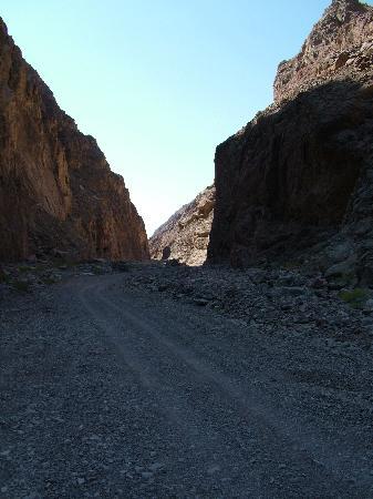 Canyon Motor Safaris : Up the canyon...