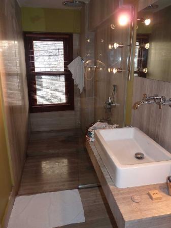 Ibrahim Pasha Hotel: Shower room