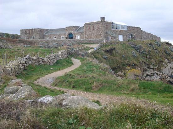 Fermanville, Ranska: Vue générale du Fort