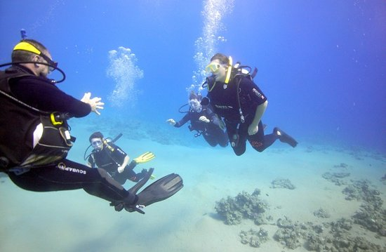 Med Sea Diving : Guiding students