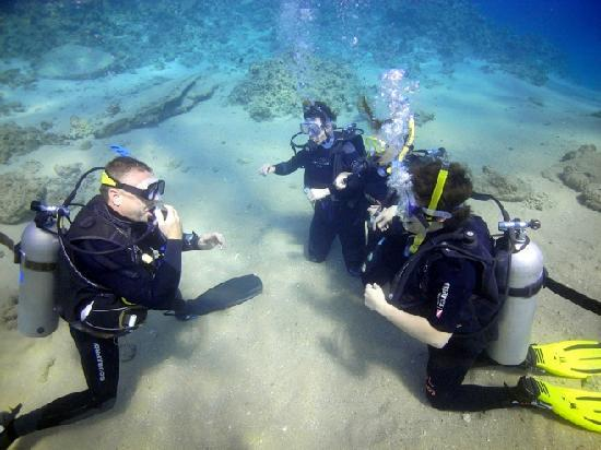 Med Sea Diving : Open water course with Jim