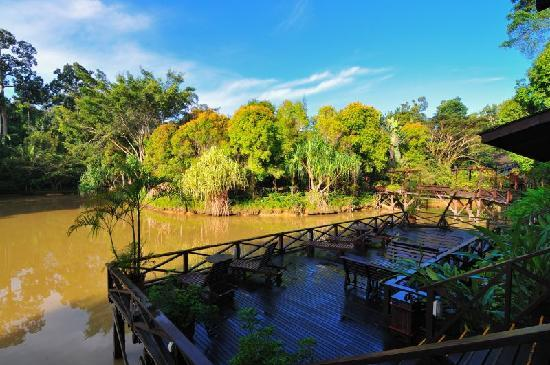 Sepilok Nature Resort Reviews