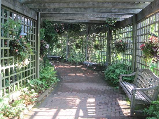 Chicago Botanic Garden Walk Through In The Rose