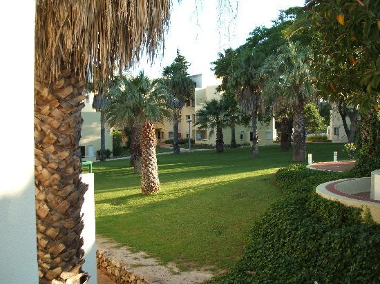 Oasis Village Apartments : Gardens of Oasis village viewed from our studio balcony