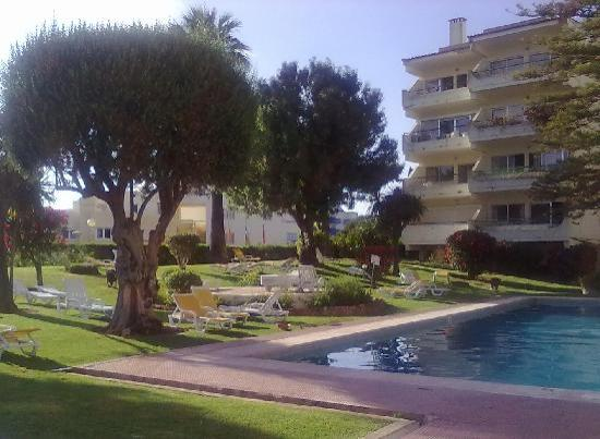 Oasis Village Apartments: Hotel pool & gardens
