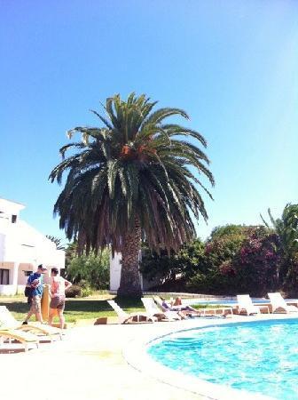 Vilamar Hotel: Pool side