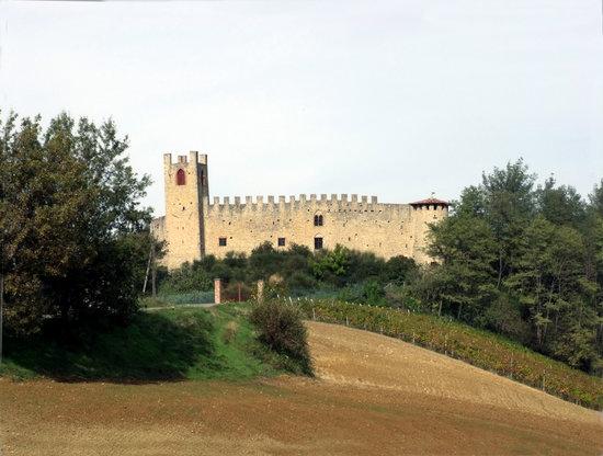 Carpaneto Piacentino, Italy: Castello di magnano