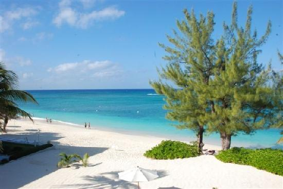 The Cayman Club: view from a unit
