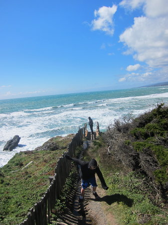 Sea Ranch Escape: Views for days!