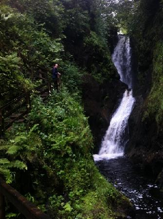 Dieskirt Farm: one of the waterfalls on the waterfall trail at glenariff