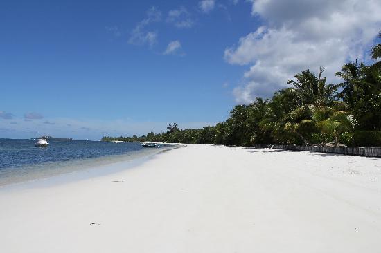 Indian Ocean Lodge: Vue depuis la plage de l'hôtel