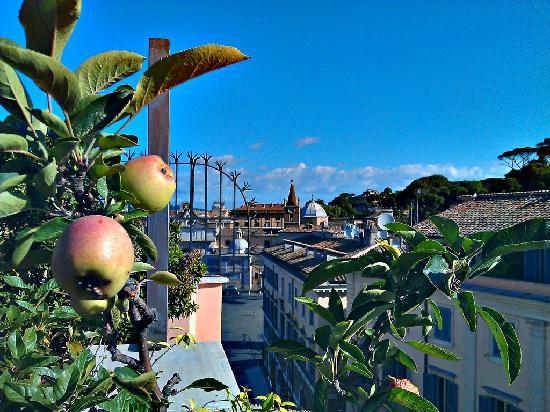 Piranesi Palazzo Nainer Hotel: Hotel Piranesi Dachterrasse