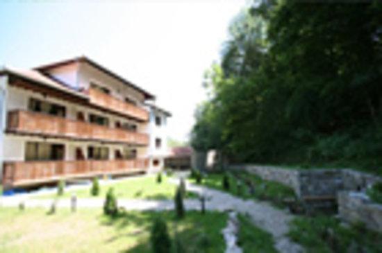 Hotel Bile