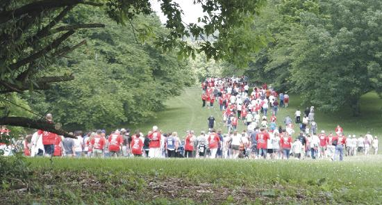 Rose Tree Park in Media hosts major events Like the Annual Walk for Wounded plus 45 mights of fr