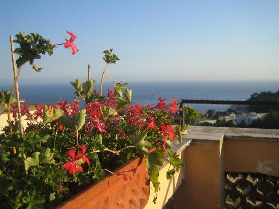 Villa Helios: otelin terasından manzara