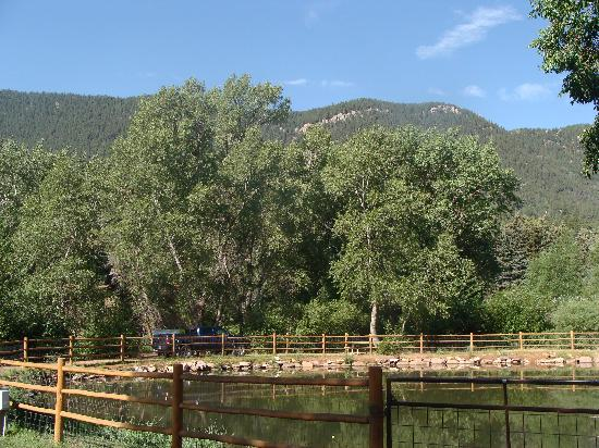 Lone Duck Campground : Trout Pond