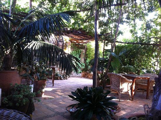 "Son Mercadal: The outdoor ""restaurant""."