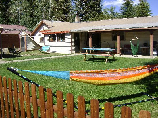 The Wanderlust Hostel: Backyard