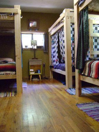 The Wanderlust Hostel: Co-Ed Dorm
