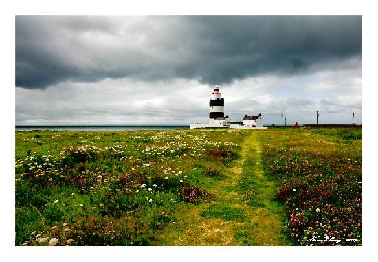 Hook Head Safaris: hook lighthouse in July