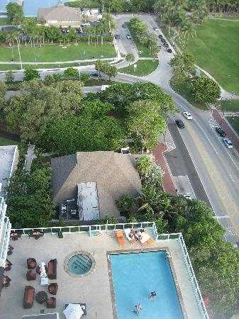 Sonesta Coconut Grove Miami: Pool area located on 8th floor