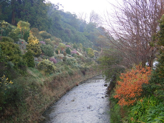 达尼丁植物园
