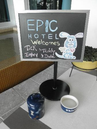 Kimpton EPIC Hotel : Welcome puppies